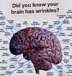 brainwrinkle