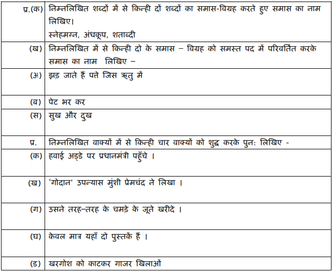 CBSE CLASS 10 HINDI B SAMPLE PAPER