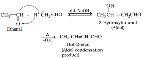 CBSE Class 12th Chemistry Notes: Aldehydes, Ketones and Carboxylic