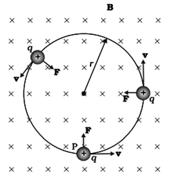 Charge particle describing a circle if v and B are mutually perpendicular