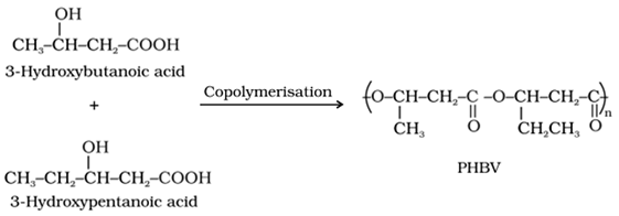 polymers class 12 notes pdf