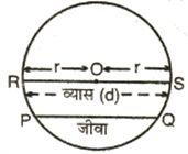 seventh example, circle