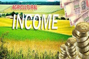 Agriculture Tax