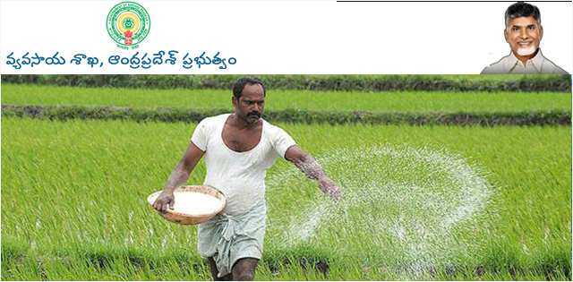 Department of Agriculture Andhra Pradesh Recruitment 2017