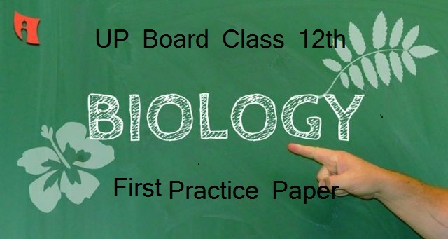 UP Board Class 12 Biology Practice Paper