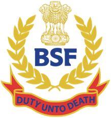 BSF Female SI