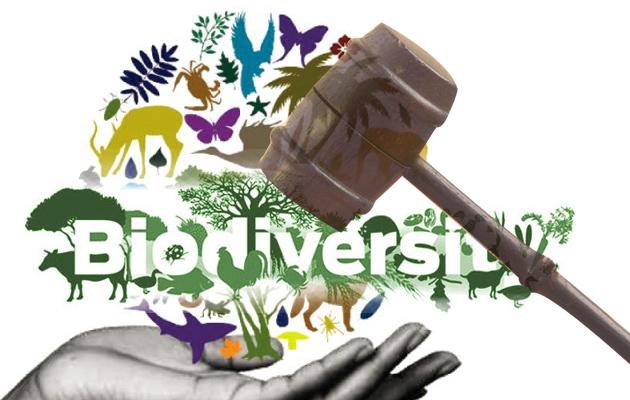 Biodiversity and Legislation
