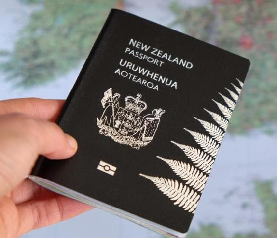 What is the meaning of green colour passport