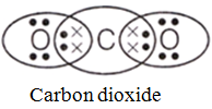 electron dot structure of ecarbon dioxide