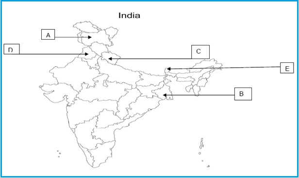 political science in hindi pdf