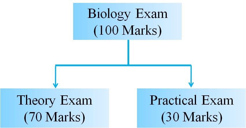 Biology paper pattern