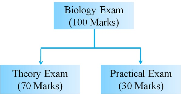 Cbse 11th biology exam 2018 blueprint or examination pattern cbse class 11 biology evaluation scheme malvernweather Image collections