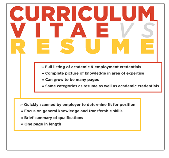 Curriculum Experience Phd Quant Resume Submit Tip Vitae