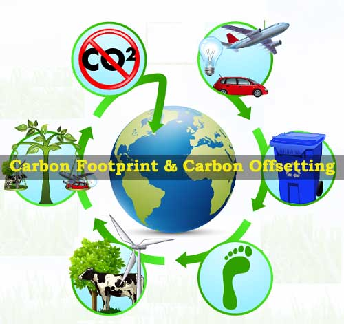 What are Carbon Footprint and Carbon Offsetting?