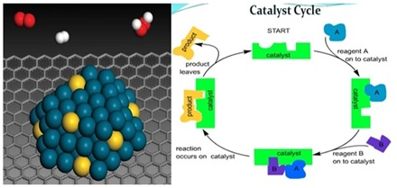 Catalyst Cycle