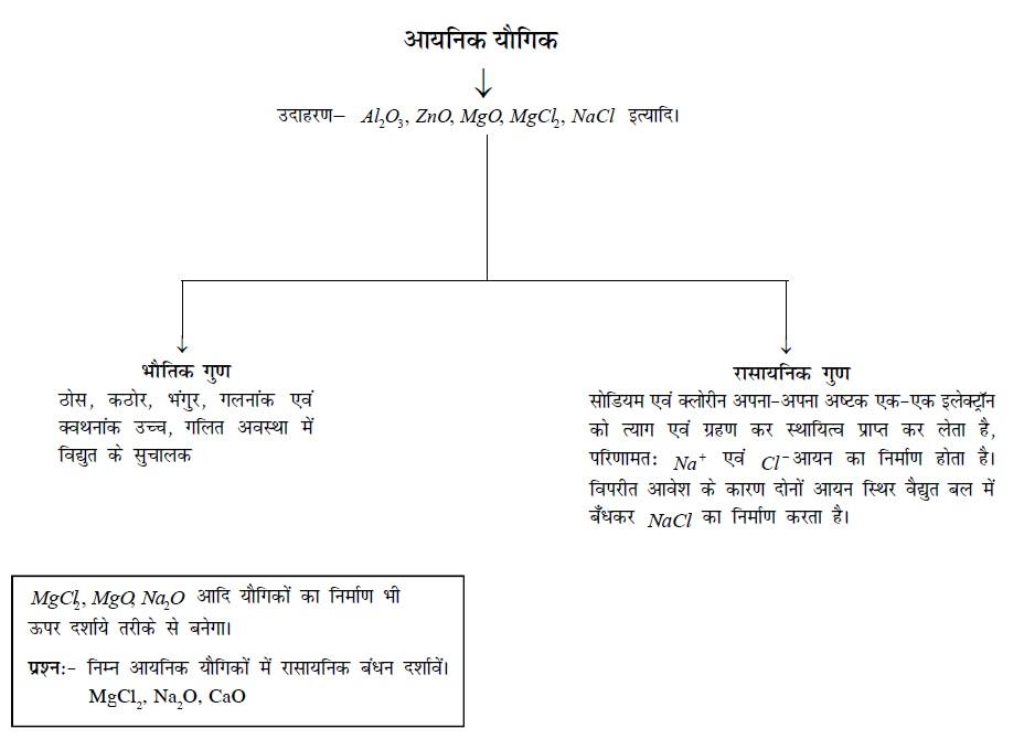 Bihar Board Class 10
