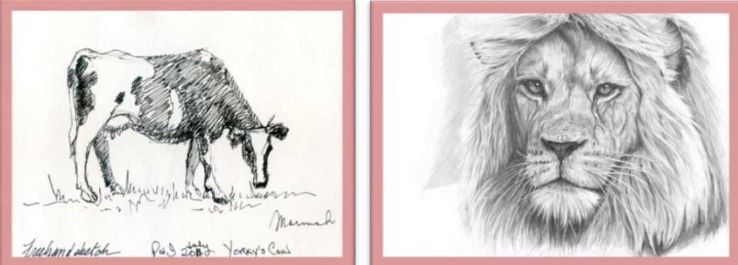 Drawing of animals