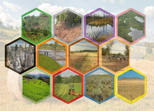 Cropping Patterns and Cropping Systems in India