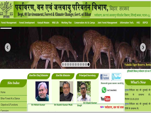 Department of Environment Forest and Climate Change Bihar Senior Research Fellow and Other Posts 2019