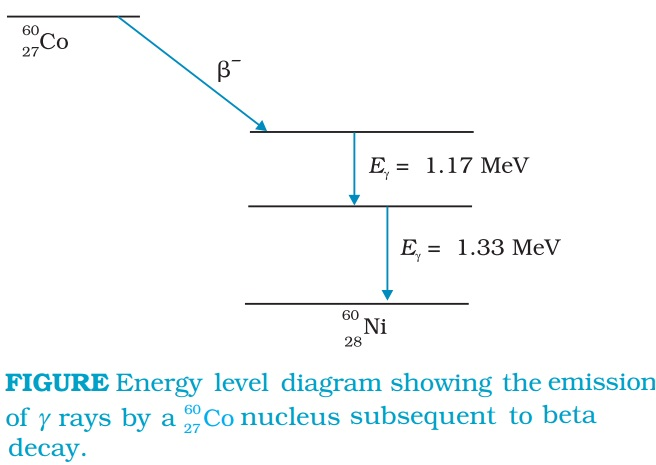 Energy Level Diagram Showing Emission of Gamma Rays