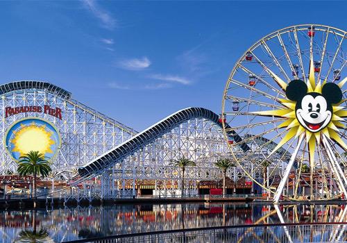 Disneyland trip Microsoft Office