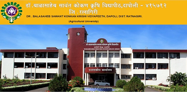 DBSKKV Assistant Professor Posts Job