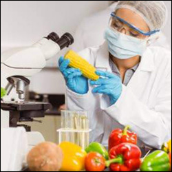 Food Technology Career Options: Job Opportunities, Courses, Salary