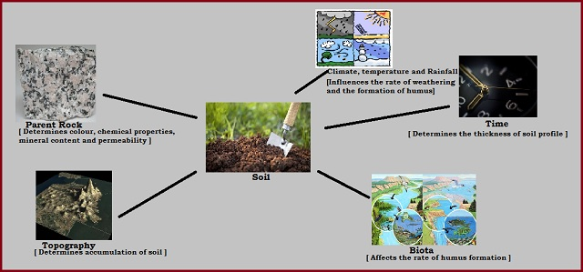 What are the factors responsible for the formation of Soil?