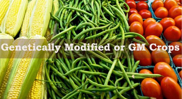 disadvantage of traditional food