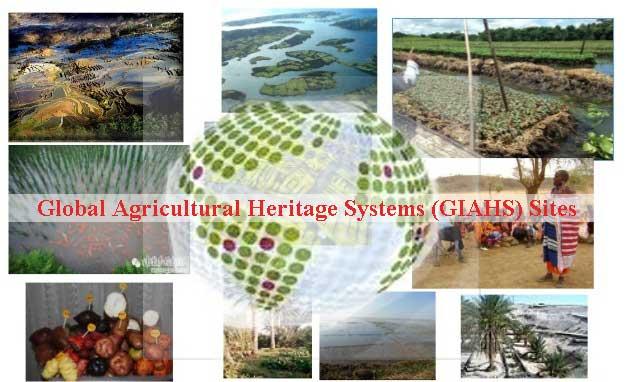 GIAHS Sites in World