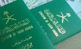What is the meaning of green colour of passport