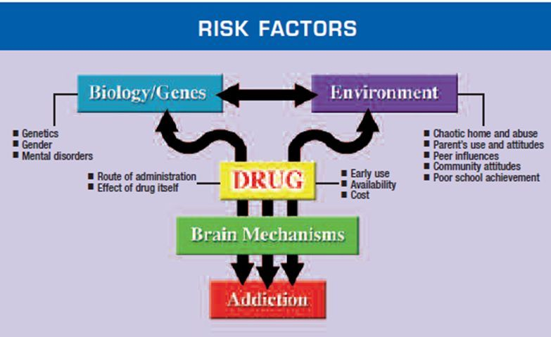 how drug abuse leads to drug addiction