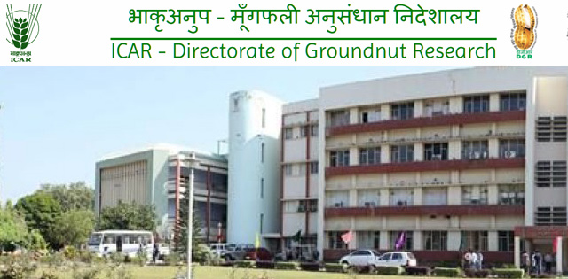ICAR - Directorate of Groundnut Research