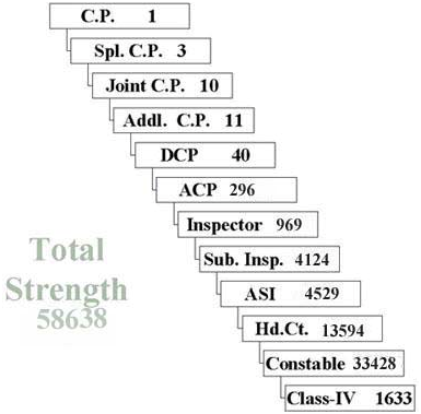 Constables in Delhi Police: Eligibility, Salary and Career Growth