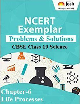Life Processes Class 9, Class 9 Science NCERT Exemplar Problems and Solutions