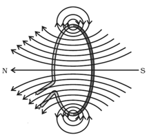 magnetic lines due to a current carrying loop