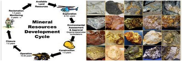 Wealth Minerals