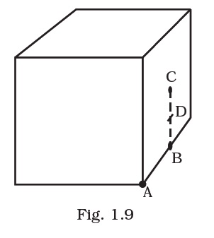 NCERT Exemplar Solution for CBSE Class 12 Physics, Chapter 1: Electric Charges and Fields, Q 1.19, Figure 1.9