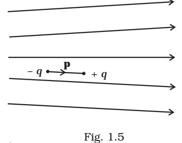 NCERT Exemplar 12th Physics Chapter 1 Electric Charges Fields Q 1.1, Figure 1.5