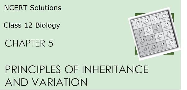 Solution 12 biology pdf class ncert