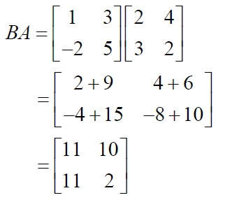 NCERT Solutions for Class 12 Mathematics ‒ Chapter 3: Matrices (Exercise 3.2; solution 1 - v)