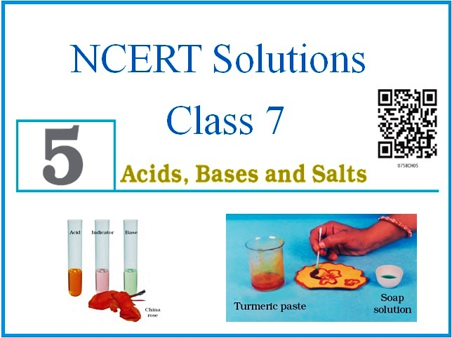 NCERT Solutions for Class 7 – Chapter 5: Acids, Bases and Salts