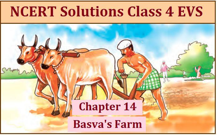 NCERT Solutions for Class 4 EVS Chapter 14: Basva's Farm