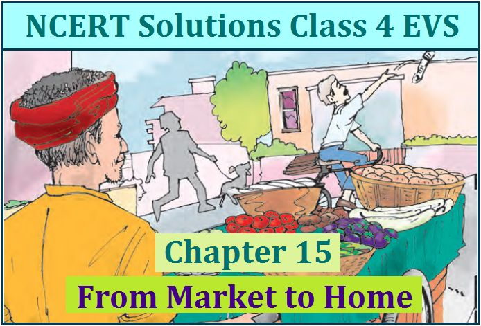 NCERT Solutions for Class 4 EVS Chapter 15: From Market to Home