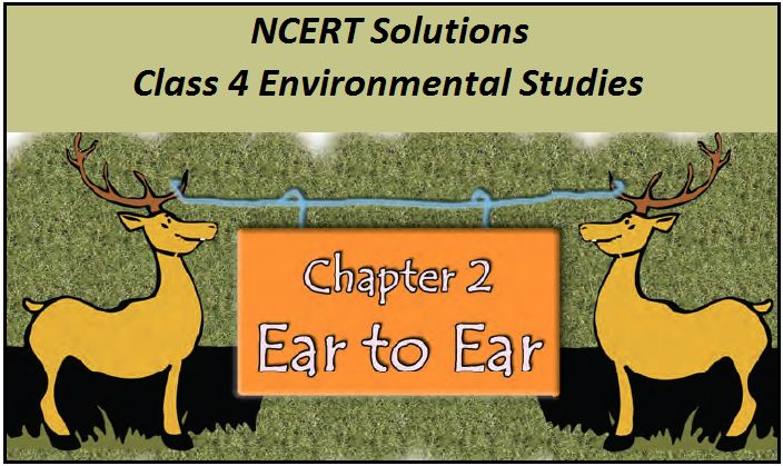 NCERT Solutions for Class 4 EVS Chapter 2: Ear to Ear