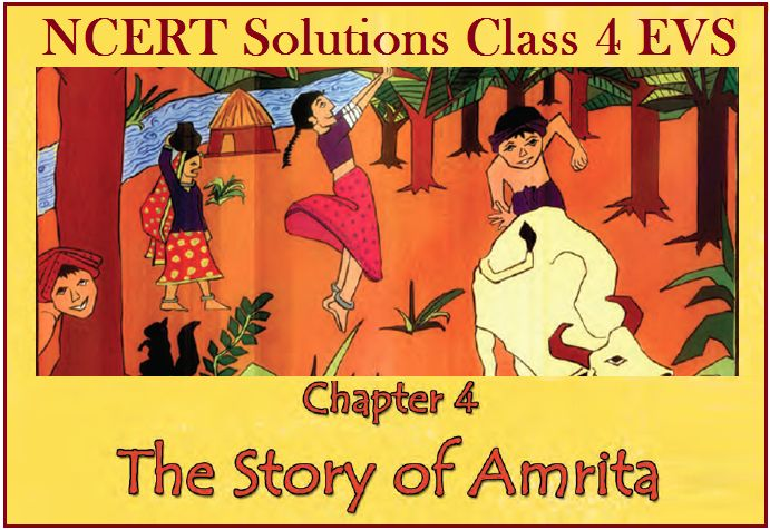 NCERT Solutions Class 4 EVS Chapter 4 The Story of Amrita | Download