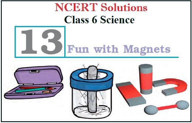 NCERT Solutions Class 6 Science Chapter 13 Fun with Magnets PDF
