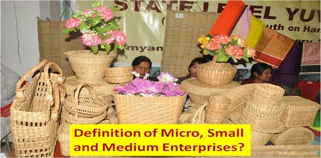 What is the definition of Micro, Small and Medium Enterprises?