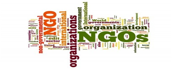 NON GOVERNMENT ORGANISATIONS PDF DOWNLOAD