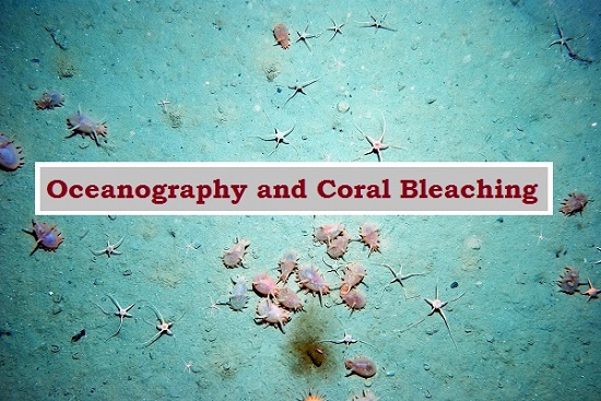 Oceanography and Coral Bleaching